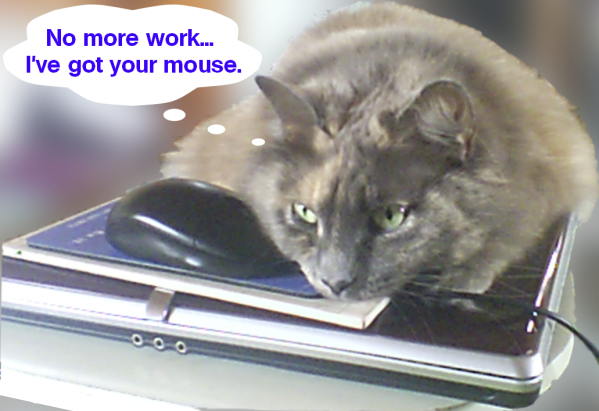 I've got your mouse.